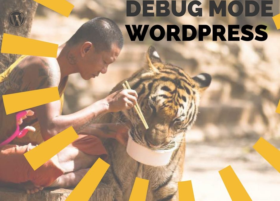 WordPress Debug Mode